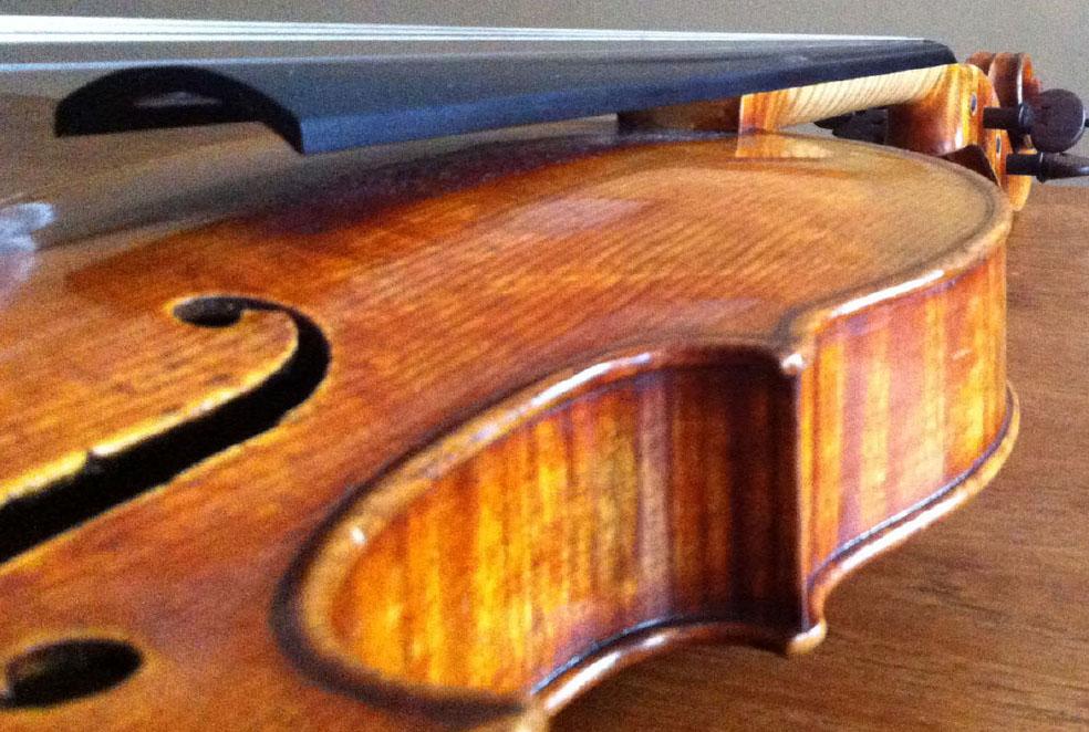 violin frt